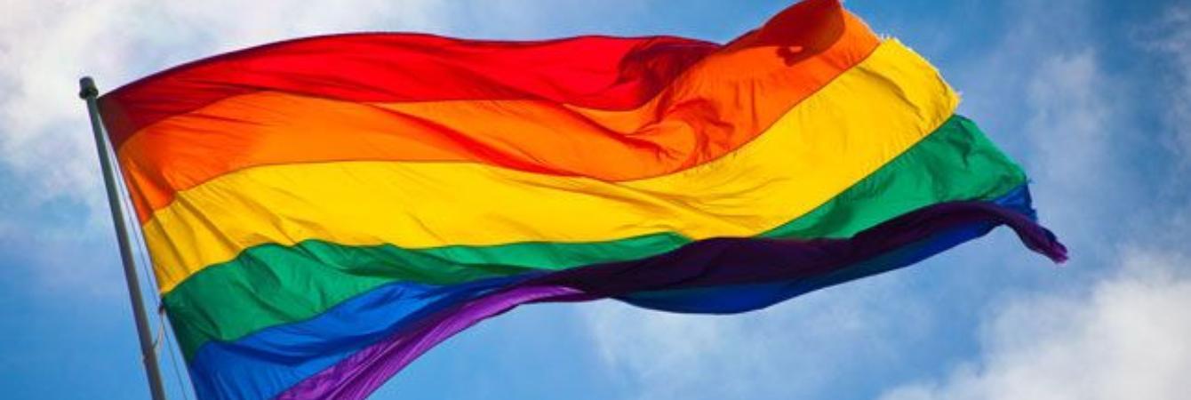 LGBTQ Information